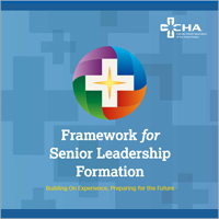 Framework Senior Leader Formation