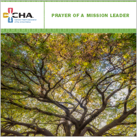 Mission Leader Prayer Card 2019