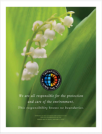 Environmental Sustainability and Catholic Health Care - Flyer